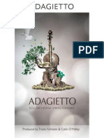 8DIO Adagietto Manual