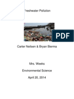 freshwater pollution essay