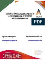 Gestion Estrategica Empresas Sociales