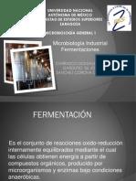 fermentacion industrial microbiologia