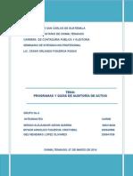 28. Informe. Programas de Auditoria de Activo. Grupo 4