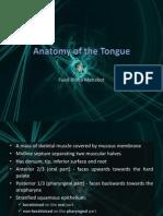 Anatomy of the Tongue