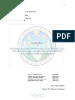 Informe Final Lactancia