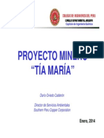 Proyecto Tia Maria - Ing. Dario Oviedo.pdf