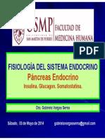 Pancreas Sábado 03may2014 Gvs