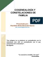 58726151 Psicogenealogia y Constelaciones de Familia