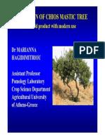Presentation M.hagidimitriou 2