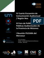 PROGRAMA PUCARA.pdf