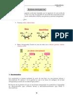 239_4- Acidos Nucleícos
