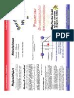 PEF broszura