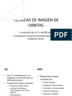 Anatomia Orbitas