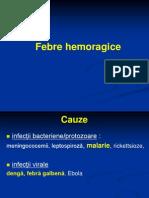 Febre Hemoragice