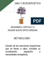 CH14-Metabolismo y Bioenergetica 191212