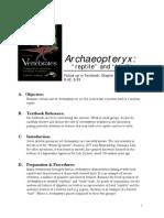 23-ArchaeopteryxF