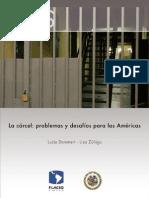 La Carcel Problemas y Desafios Para Las Americas FLACSO Et Al