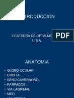 introducción+UBA.ppt