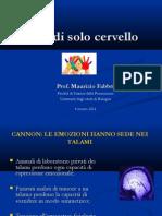 84-Non Di Solo Cervello, Prof Fabbri, Formazione Neuroscienze