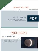 100 Sistema Nervoso
