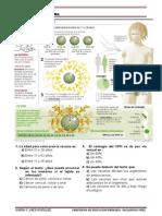 Texto de comprension..pdf