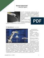Roboti Industrial Pentru Aplicatia de Vopsire