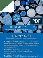 Biomimicry Presentation