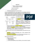 2. HEMOSTASIA - Plaquetas, CaracterÃ_sticas. Hemostasia, Cascada de CoagulaciÃ_n. Fibrinolisis