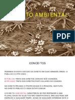 CONCEITOS DE DIREITO AMBIENTAL