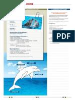 CEB-Exercices-Francais.pdf