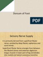 Presentation on Dorsum of Foot
