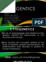 Cytogentics Powerpoint