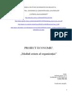 Proiect Economic Mediul Extern Al Organizatiei