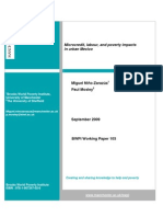 Microcredit, labour and poverty impacts in urban Mexico