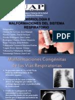 Seminario de Malformaciones Respiratorias