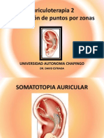 Auriculoterapia 2