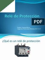 dicertacion de reles.pptx