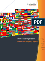 WOrld Trade Organisation & Intelllectual Property Rights