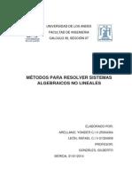Métodos Para Resolver Sistemas Algebraicos No Lineales
