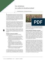 15 Impacto de Los Sistemas Agropecuarios