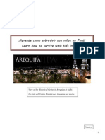arequipa survival guide
