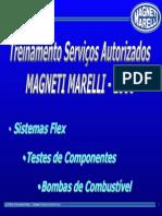 Treinamento 2006 - Parte i - Sistemas Flex
