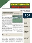 Area Calcio Giovanile Magazine