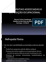 Nefropatias-costalonga Ocupacionais Nefropatias Ppt.