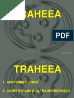 Traheostomia. Corpi straini traheobronsici