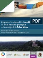 Re Selva Maya
