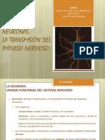 Presentación Tema 7 2014