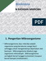Jenis Dan Batasan Mikroba