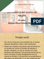 Biomecanica del tendon de aquiles.pptx