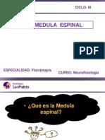 Neurofisiologia Clase 3