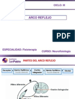 Neurofisiologia Clase 3.3