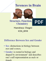 Sex+Differences+in+Brain2